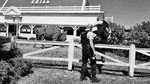 L'artiste Gilbert Coqalane décoche des flèches dans la sculpture en forme de bison trônant devant le restaurant Buffalo Grill d'Essey-les-Nancy.